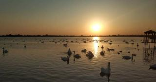 Мойнакское озеро.jpg