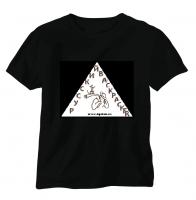 треугольник2.PNG